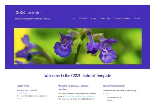 CSS3 catmint
